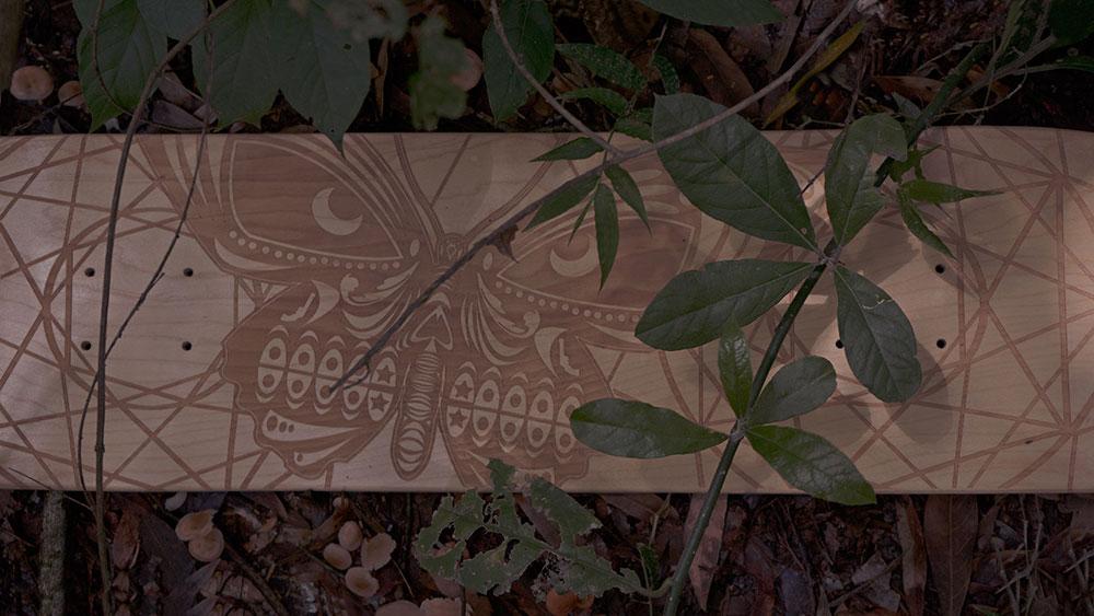 Black Revolver Animalia & Insecta Collective tabla / deck butterfly catálogo no26