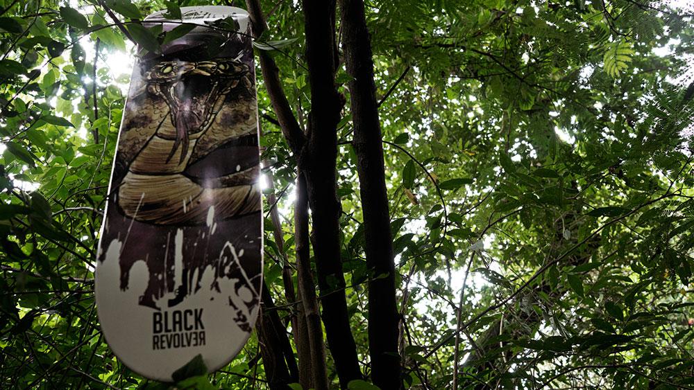 Black Revolver Animalia & Insecta Collective tabla / deck cobra catálogo no30