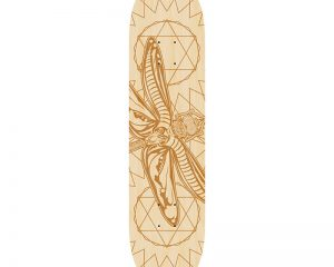 Black Revolver animalia & insecta collective dragonfly deck