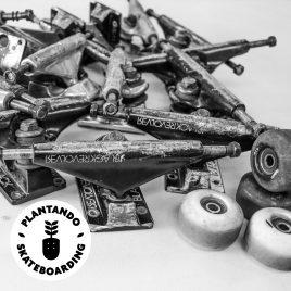 Black Revolver x Plantando Skateboarding donación / donation
